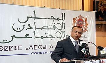 تقديم بنية ومهام المجلس الاقتصادي والاجتماعي
