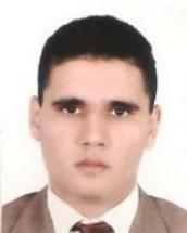 تدبير المرافق العمومية المحلية على ضوء مقتضيات الدستور المغربي الجديد