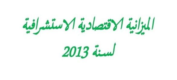 الميزانية الاقتصادية الاستشرافية لسنة 2013