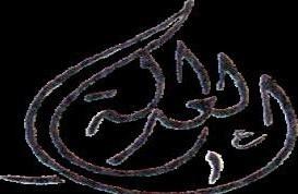 قيم النظرية السياسية، نموذج قيمة العدالة في الاسلام عند جمال الدين الافغاني