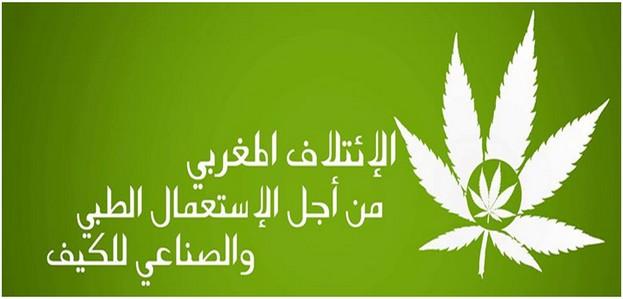 إلى السادة ممثلي الأمة بمجلسي النواب والمستشارين: بشأن الدورة الاستثنائية للجمعية العامة لهيئة الأمم المتحدة حول المخدرات – 2016