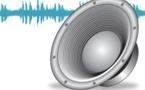 تسجيل للبرنامج الإذاعي النخب الصاعدة حول دور المجلس الأعلى للحسابات في حماية المال العام